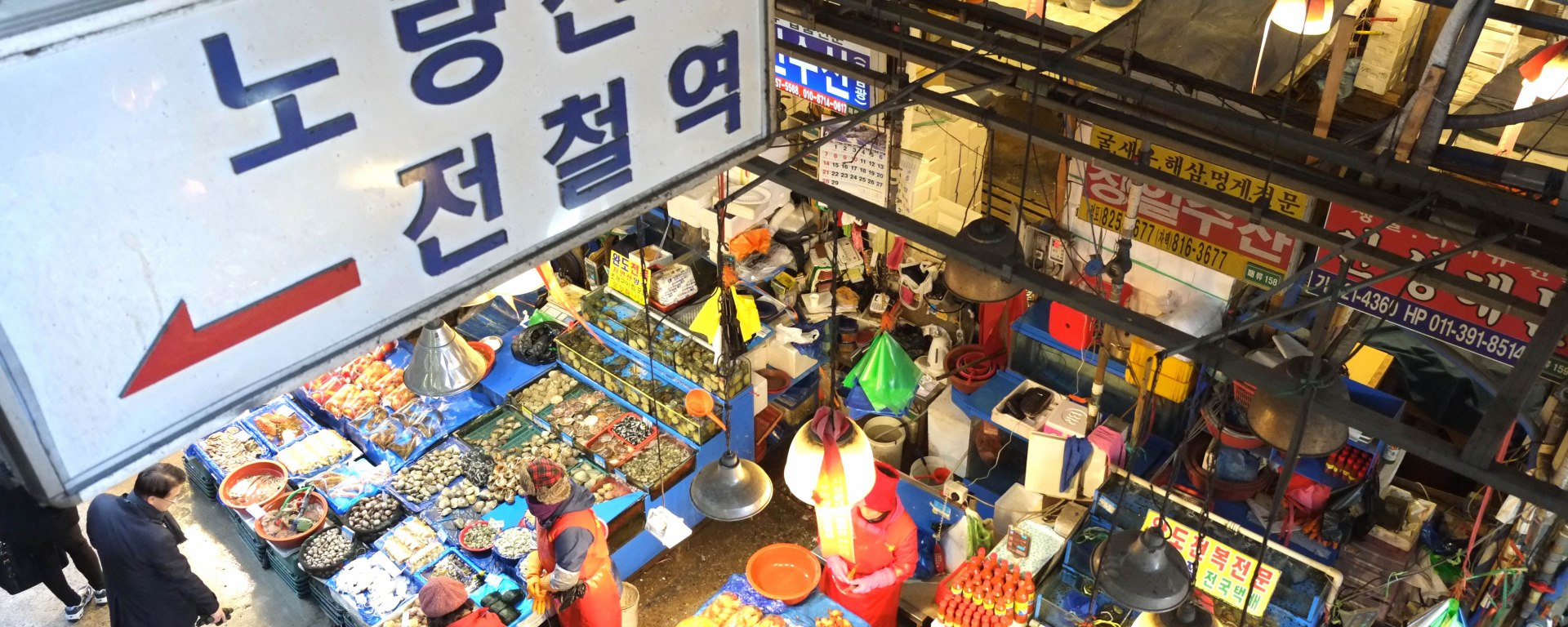 Noryangjin Fisheries Wholesale Market (노량진 수산시장